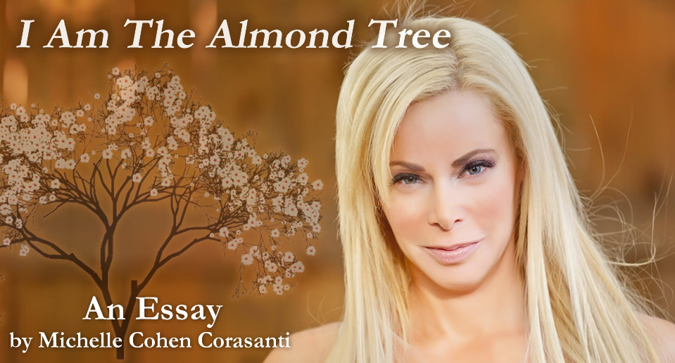 the almond tree essay
